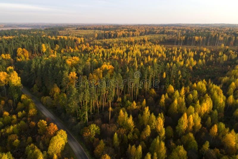 Ideia aérea da paisagem da queda da floresta do outono imagem de stock
