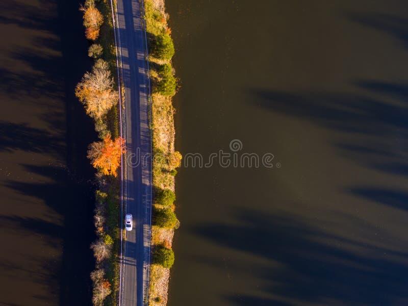 Ideia aérea das folhas e das cores da queda em torno de um lago fotografia de stock
