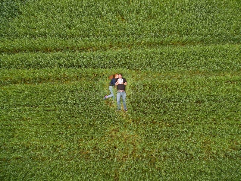 Ideia aérea de um par que encontra-se no campo de trigo foto de stock royalty free