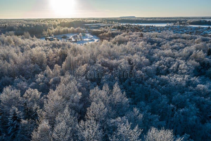 Ideia aérea de um por do sol bonito na floresta do inverno imagens de stock