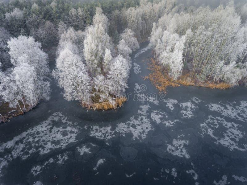 Ideia aérea do fundo do inverno com uma floresta coberto de neve fotografia de stock