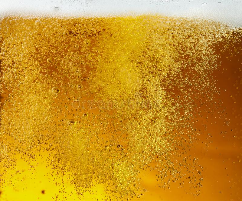 Ideia ascendente próxima de bolhas de flutuação na textura da cerveja clara fotos de stock