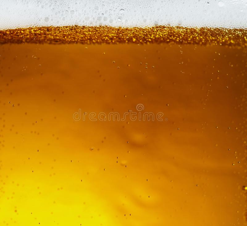 Ideia ascendente próxima de bolhas de flutuação na textura da cerveja clara imagem de stock