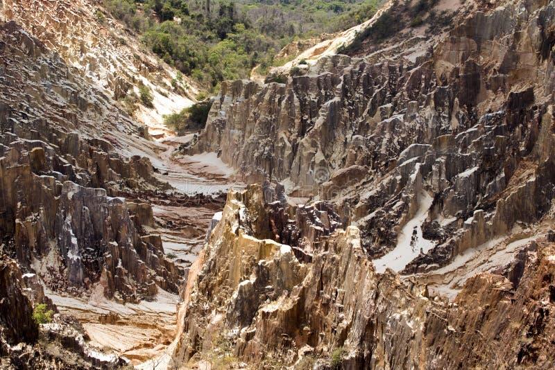 A ideia bonita da erosão da garganta sulca, na reserva Tsingy Ankarana, Madagáscar imagem de stock royalty free