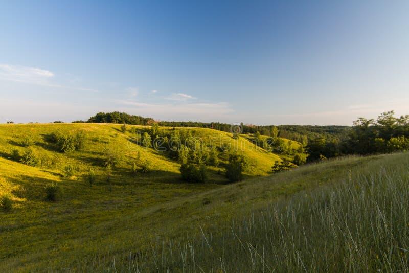 Ideia bonita do campo de grama com sunbright imagens de stock royalty free