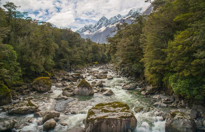 A ideia bonita do cenário da natureza na estrada de Milford Sound com Mt Tutoku 2.723 medidores, Nova Zelândia fotos de stock royalty free