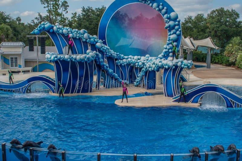 Ideia bonita do estádio de Bayside em Seaworld 2 foto de stock