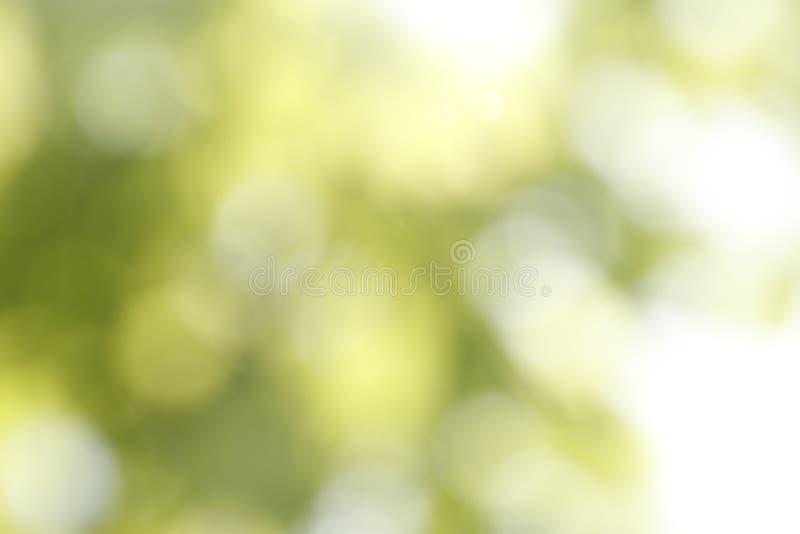Ideia borrada do fundo verde abstrato Efeito de Bokeh fotografia de stock
