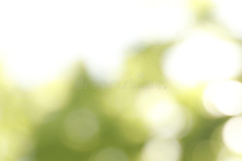 Ideia borrada do fundo verde abstrato Efeito de Bokeh fotos de stock