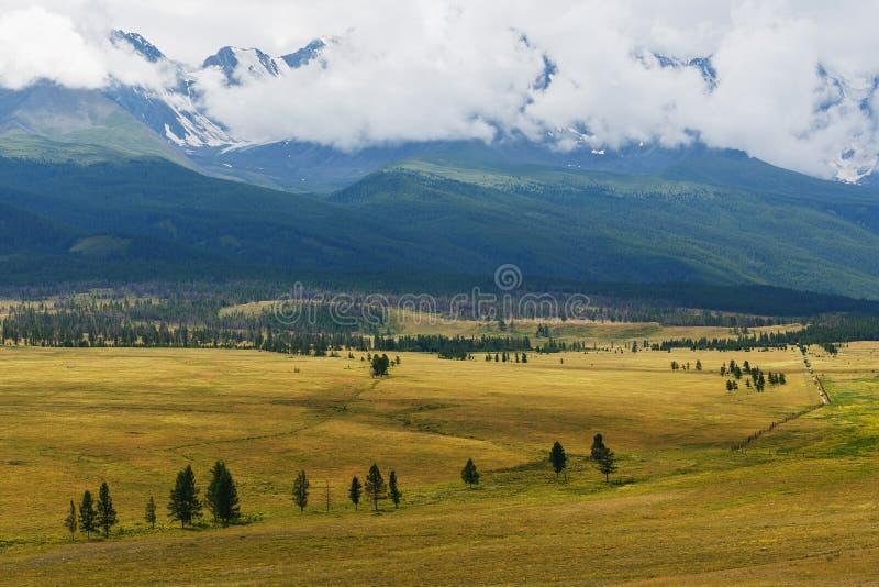 Ideia cênico da escala coberto de neve do norte-Chuya nas montanhas no verão, Sibéria de Altai, Rússia fotos de stock royalty free