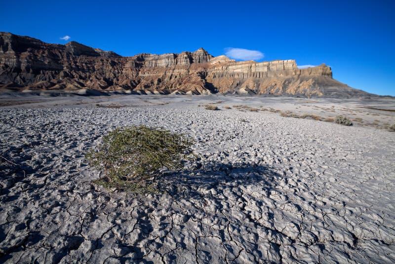 Ideia cênico do ponto de Alstrom, lago Powell, página, o Arizona, unido fotos de stock