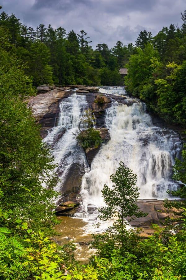 A ideia da elevação cai na floresta do estado de Du Pont, North Carolina imagens de stock