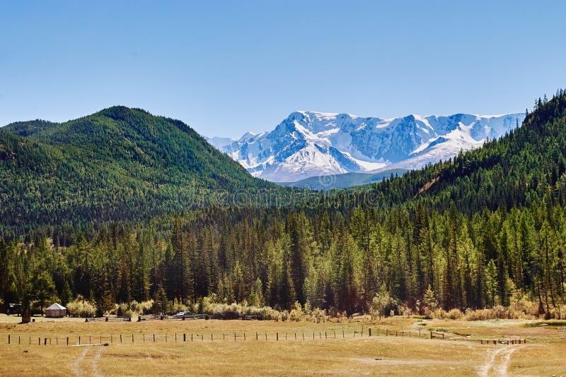 Ideia da escala coberto de neve nas montanhas de Altai, Sibéria do norte-Chuya, Rússia imagens de stock royalty free