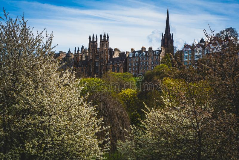 Ideia da milha real na mola, Edimburgo, Escócia, Reino Unido fotografia de stock royalty free