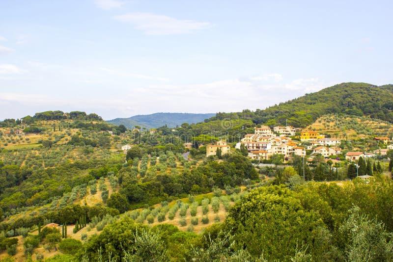 Ideia da paisagem típica de Toscânia no verão, Itália fotografia de stock royalty free