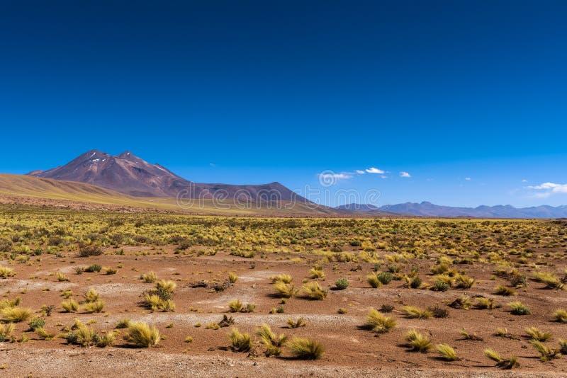 Ideia das montanhas e do lanscape em torno das lagoas altiplanic no deserto de Atacama, o Chile do deserto fotografia de stock