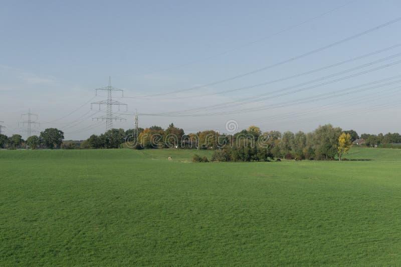 Ideia de um campo verde vazio com uma linha elétrica só da torre fotos de stock royalty free