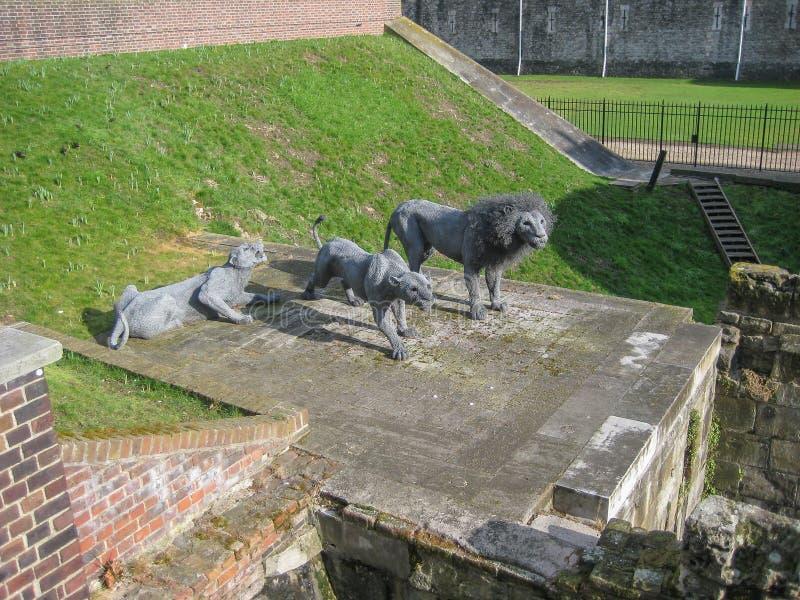 Ideia de uma escultura de 1 leão e de duas leoas fotografia de stock royalty free