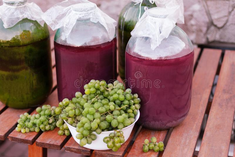 Ideia dianteira dos grupos de uvas maduras verde-amarelas de um jardim orgânico fotos de stock royalty free