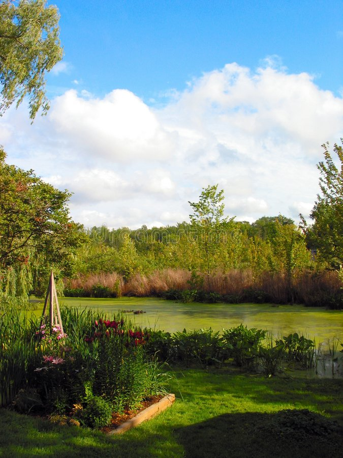 Ideia do â 1 do lago reeds