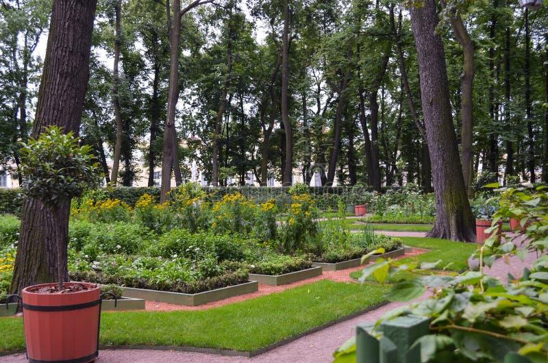 Ideia do city& antigo x27; jardim Letniy triste, St Petersburg do verão do parque de s Paisagem agradável com árvores altas e flo imagem de stock