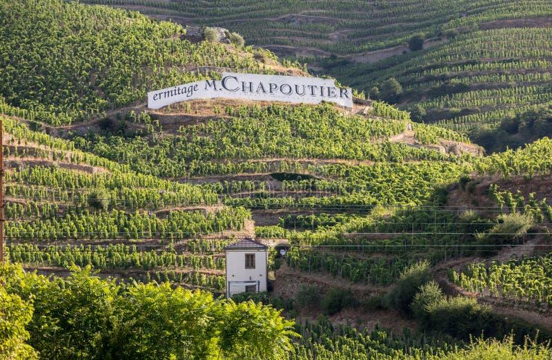 Ideia do M Vinhedos do Crozes-eremitério de Chapoutier em Tain l 'eremitério, vale de Rhone, França fotos de stock royalty free