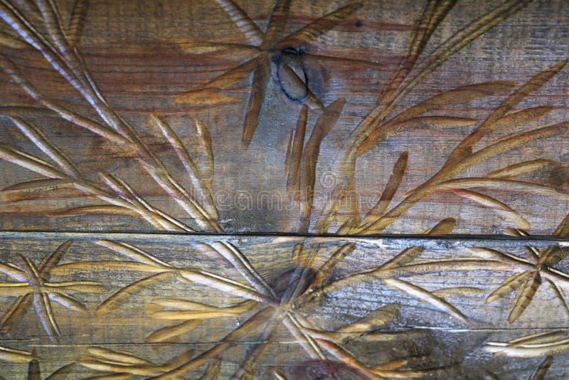 Ideia do teste padrão de madeira cinzelado, textura de madeira foto de stock