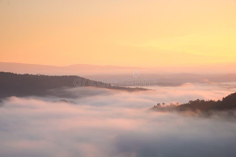 Ideia enevoada da paisagem do nong do pha de Phu na manhã fotografia de stock royalty free