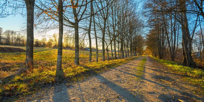 Ideia fantástica do por do sol de um caminho do beira-rio em Galiza, Espanha imagem de stock