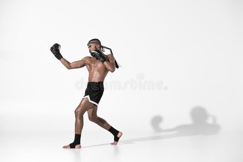 Ideia lateral do treinamento tailandês muay do lutador isolado no branco imagem de stock