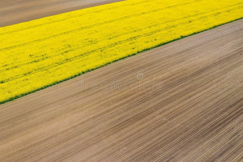 Ideia a?rea de campos do ver?o Campos amarelos de cima de Foto capturada com zang?o imagens de stock