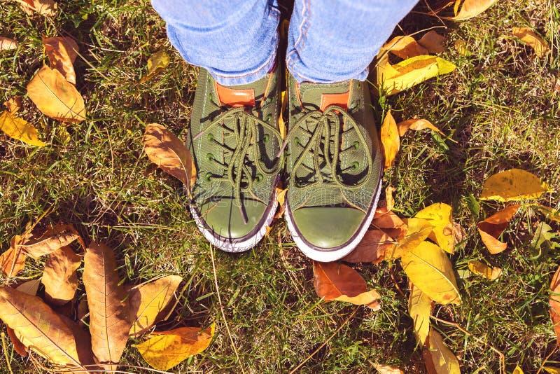 A ideia superior do close-up dos pés nas sapatilhas verdes está a grama verde com as folhas amarelas no parque do outono imagem de stock