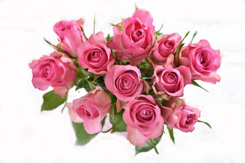 Ideia superior do grupo das rosas cor-de-rosa isoladas no branco fotos de stock