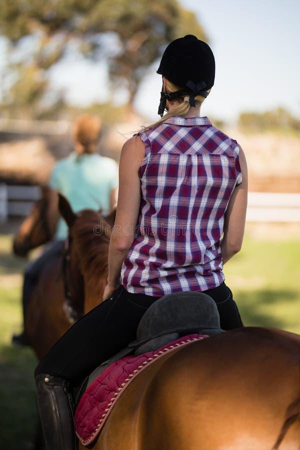 Ideia traseira da equitação da mulher com o amigo que senta-se no cavalo no fundo fotografia de stock