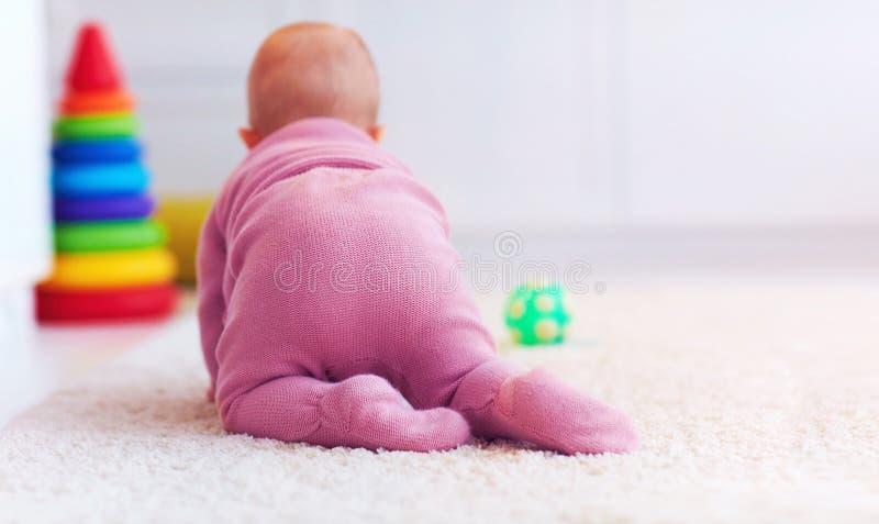 Ideia traseira de seis meses de bebê idoso que rasteja no tapete em casa imagens de stock royalty free