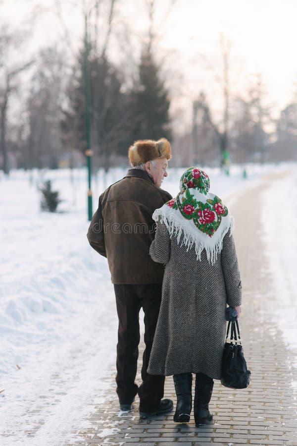 Ideia traseira dos pares idosos que andam no parque Pessoas adultas felizes junto embora os anos imagem de stock