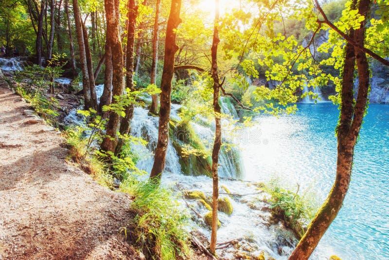 Ideias cênicos da água e da luz solar de turquesa O parque nacional dos lagos famosos Plitvice, Croácia, Europa imagens de stock royalty free