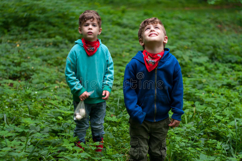 Identical twin brothers in forest thickets stock photos
