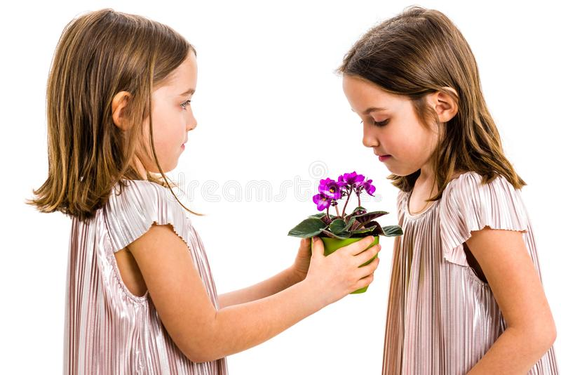 5,598 Child Giving Flower Photos - Free & Royalty-Free Stock Photos from Dreamstime
