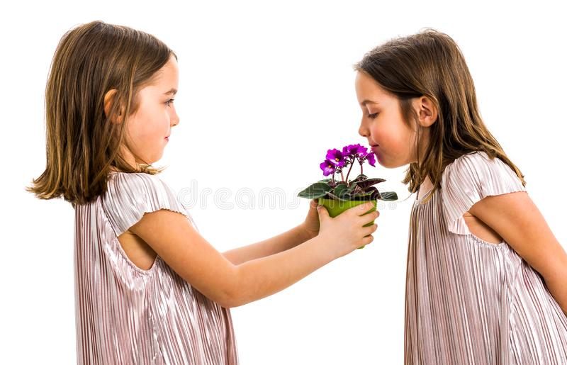 Identical twin girl is smelling flower - gift from sister stock photo