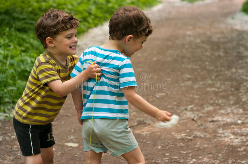 Identical twins fight. Three year old identical twins fight in the park. Children dressed in the colours of the Ukrainian flag. In the hands of one child poplar royalty free stock photo