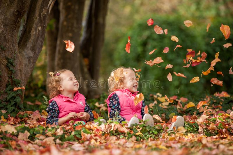 Identical twins having fun with autumn leaves in the park, blond cute curly girls, happy kids, beautiful girls in pink jackets stock photography