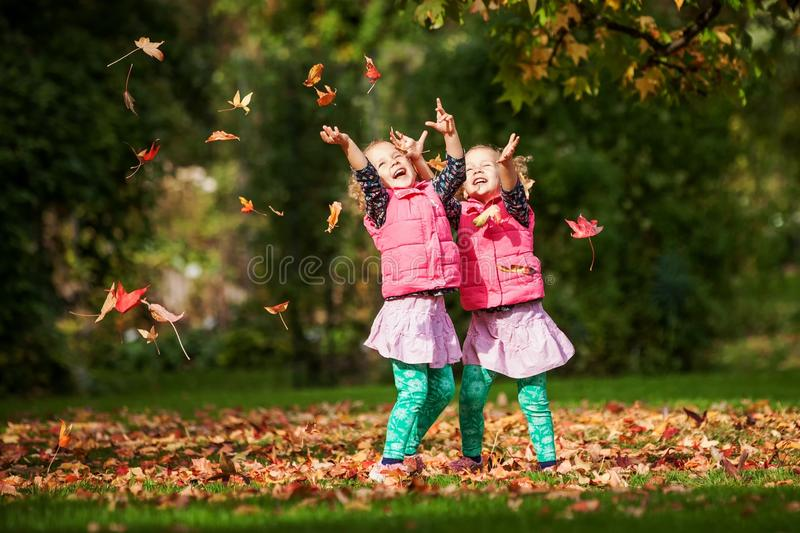 Identical twins having fun with autumn leaves in the park, blond cute curly girls, happy kids, beautiful girls in pink jackets royalty free stock image