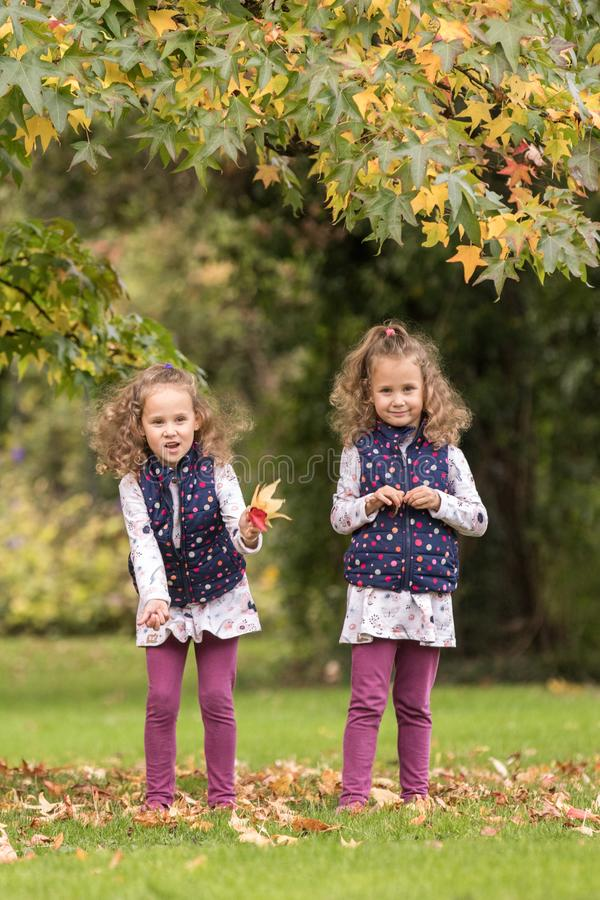 Identical twins having fun under tree with autumn leaves in the park, blond cute curly girls, happy family, beautiful girls in stock photography