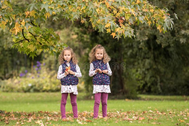 Identical twins having fun under tree with autumn leaves in the park, blond cute curly girls, happy family, beautiful girls in stock image