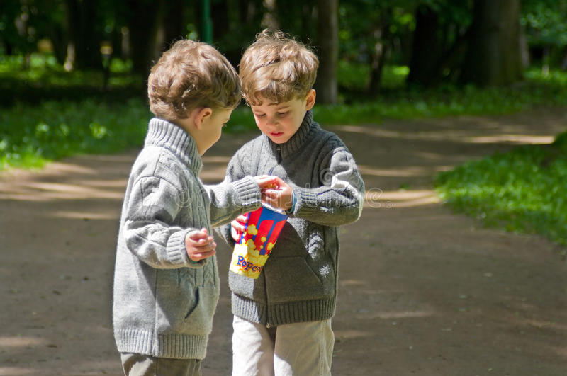 Identical twins with popcorn in the park. Three year old identical twins with popcorn. Boys are dressed in knitted sweaters with zipper. Clothing grey in royalty free stock photos
