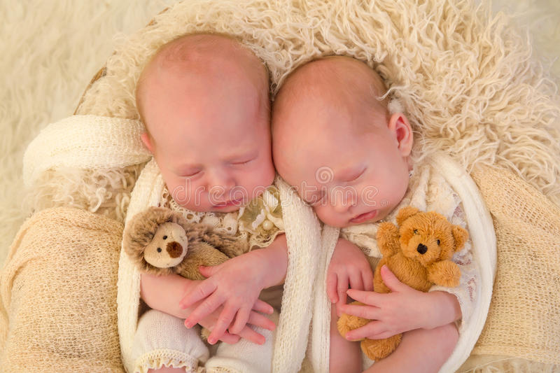 Identical twins with toys. Adorable newborn identical twin baby girls sleeping in a soft basket royalty free stock photo