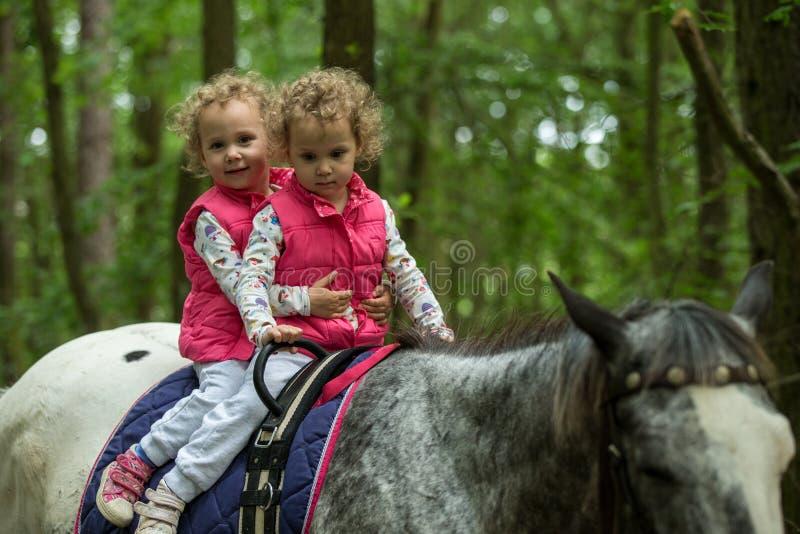 Identieke tweeling die horseback van het berijden in het hout, jonge mooie meisjes met blond krullend haar op een paard met backl stock foto