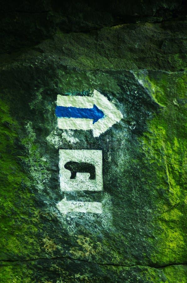 Identificar azul da fuga por meio de símbolo do urso fotografia de stock
