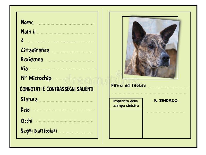 Identificatie voor honden royalty-vrije illustratie